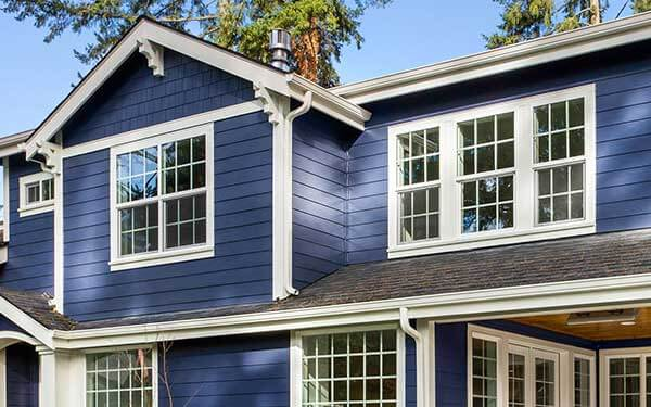 Single Hung & Double Hung Windows