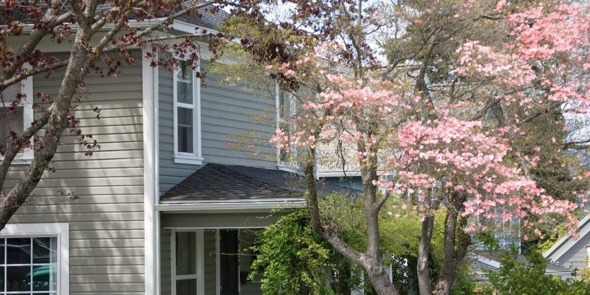 Top Spring Home Improvement Projects