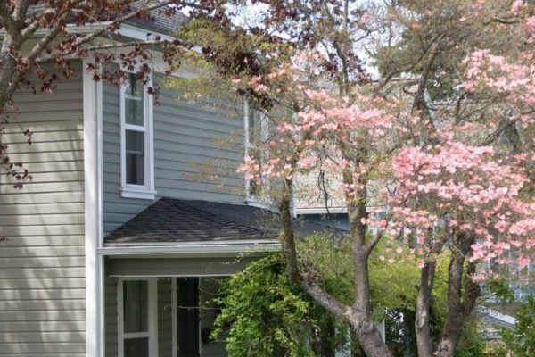 Top Home Improvement Projects for the Spring Season